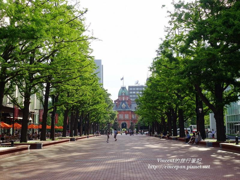 北海道舊道廳 銀杏1