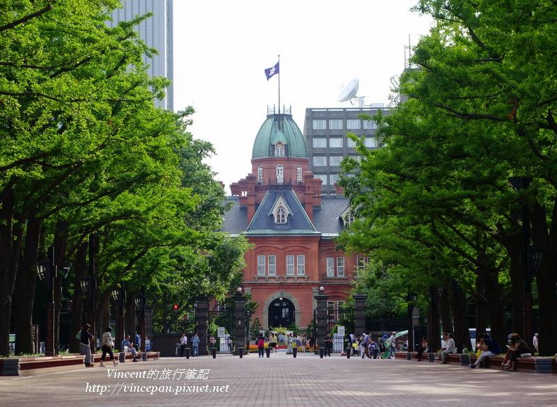 北海道舊道廳 銀杏3