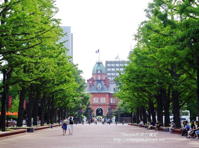 北海道舊道廳 銀杏2