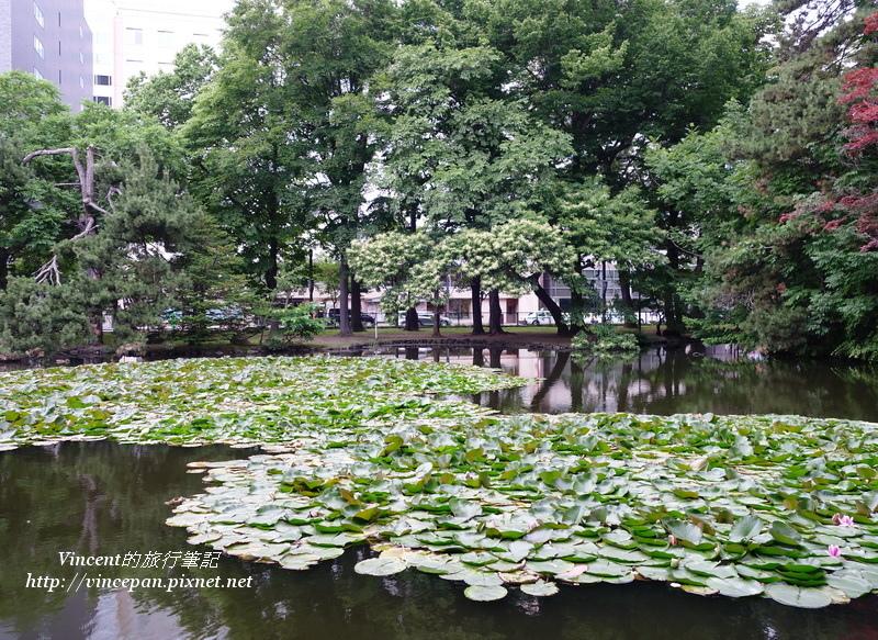 花木扶疏的園區2