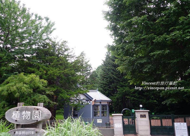 北海道大學植物園2