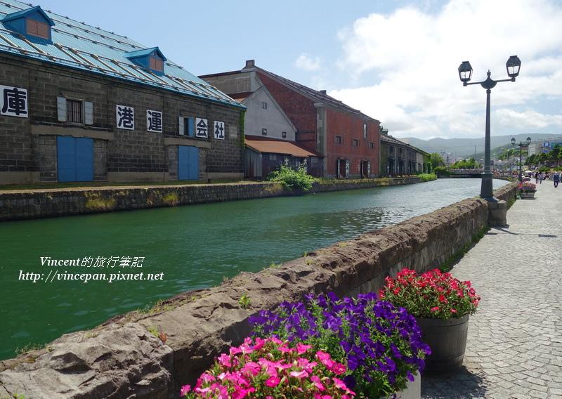小樽運河 花朵