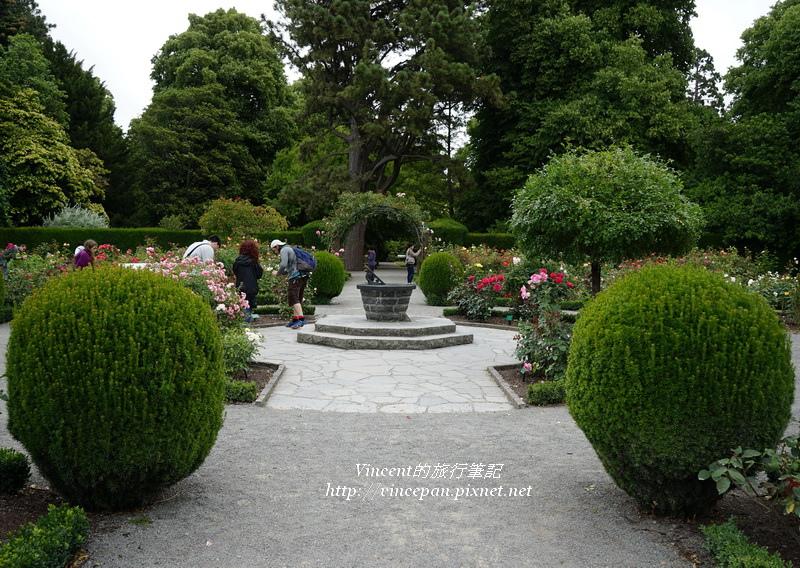 玫瑰花園 園藝1