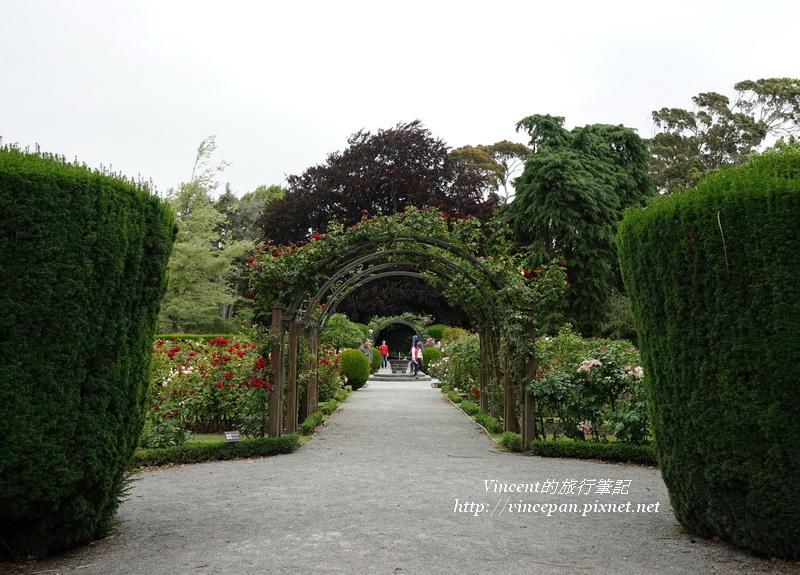 玫瑰花園 園藝2