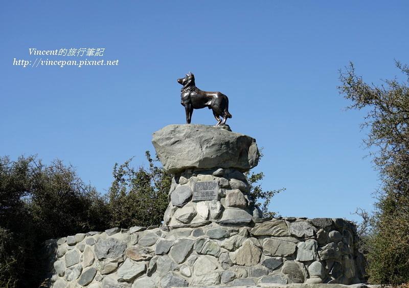 堤卡波狗雕像