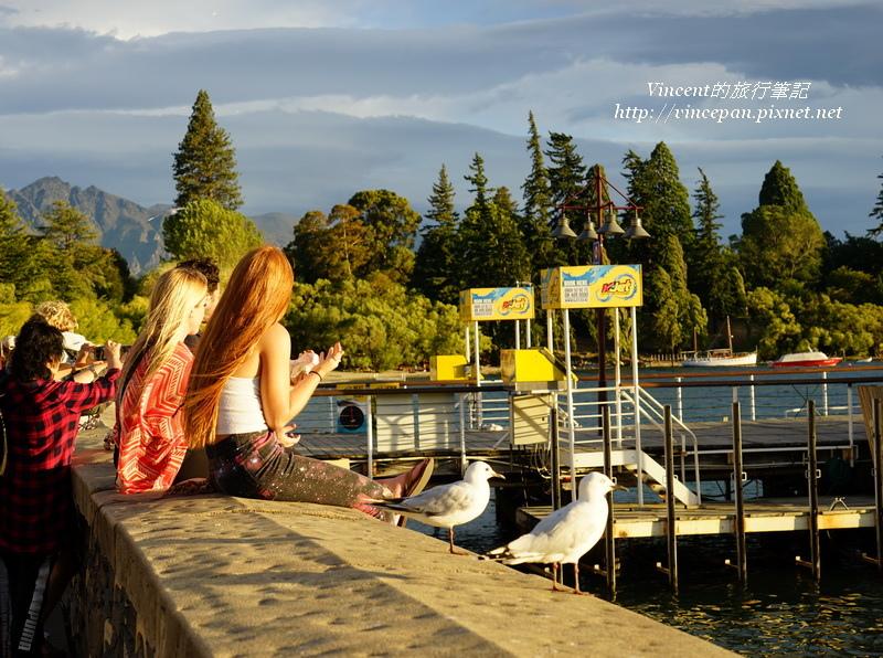 瓦卡蒂波湖 海鷗