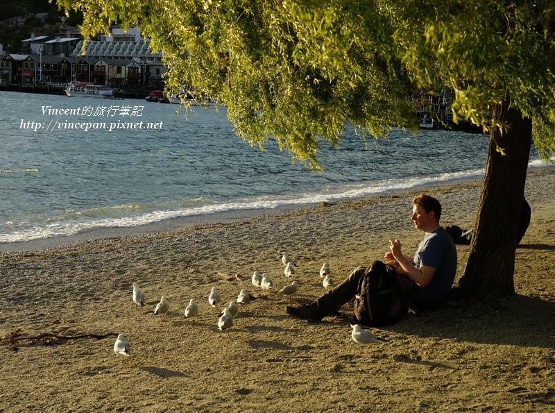 沙灘 海鳥