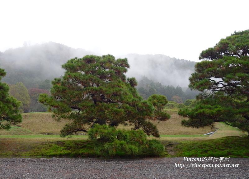 雨中的山嵐