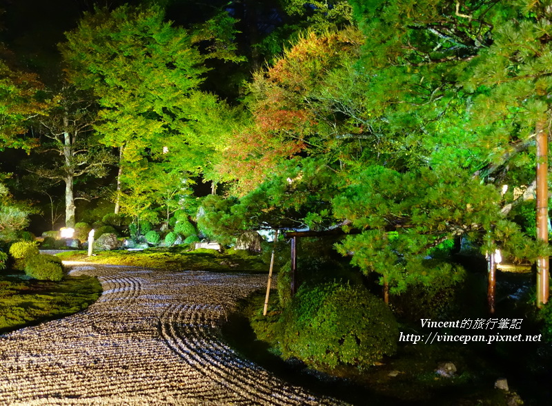 曼殊院 枯山水庭園2