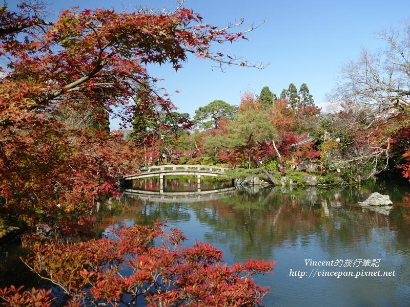 放生池 楓葉