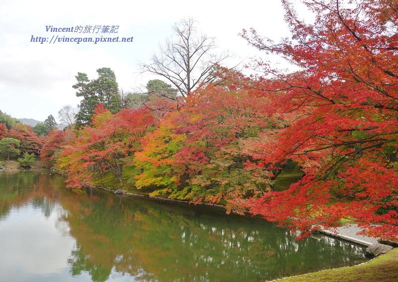 北池畔紅葉