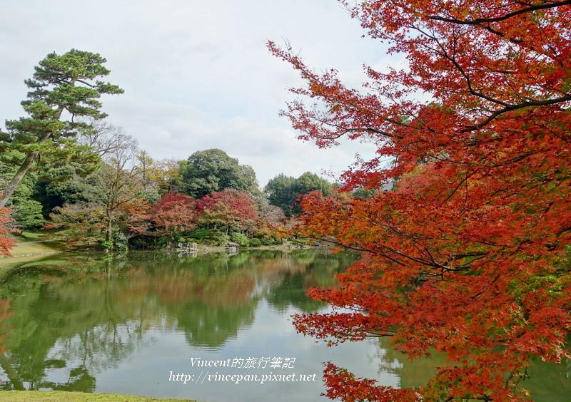 仙洞御所 北池 紅葉