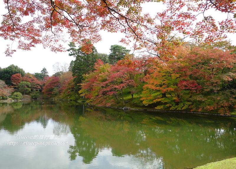 仙洞御所 北池 楓葉