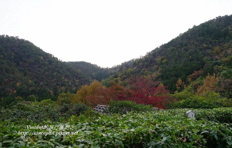 鷹峰三山 景