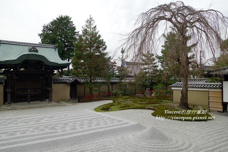 高台寺銀沙灘 樹