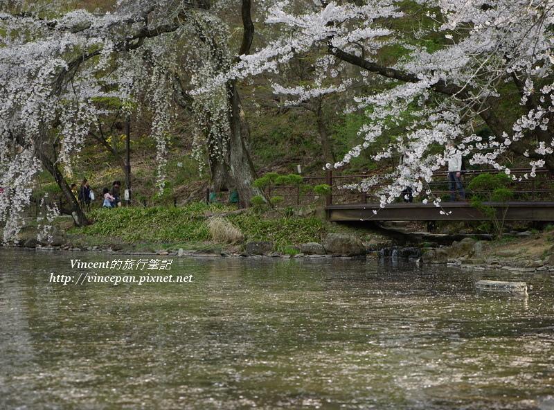 竜ヶ池上 花瓣