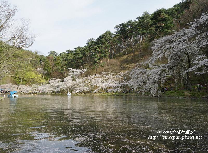 竜ヶ池花瓣