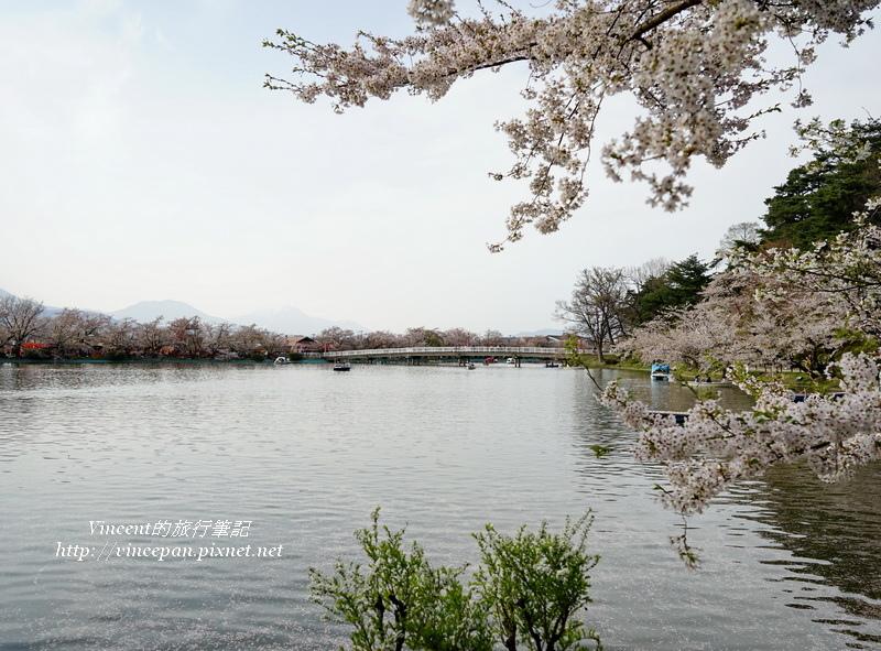 遠山、櫻花與臥龍橋