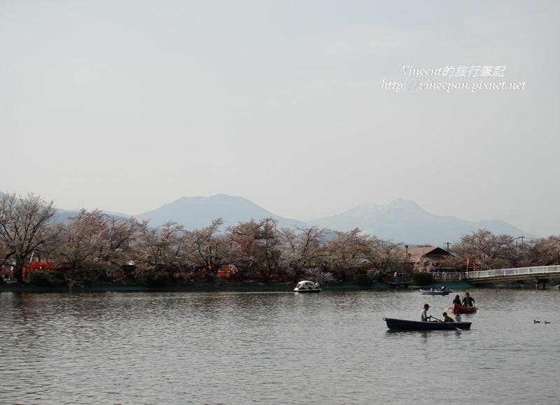 遠山、櫻花