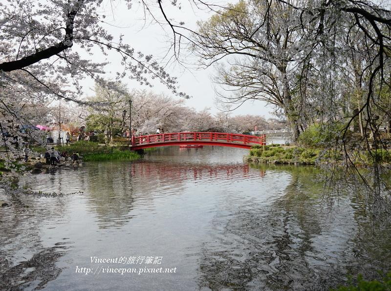 臥龍公園 橋