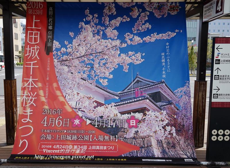 上田城櫻花祭海報