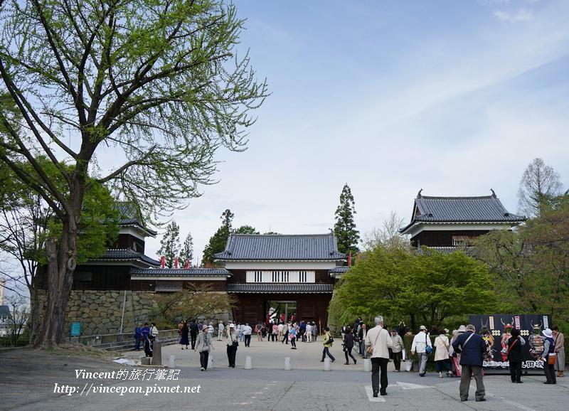 上田城大門 樹