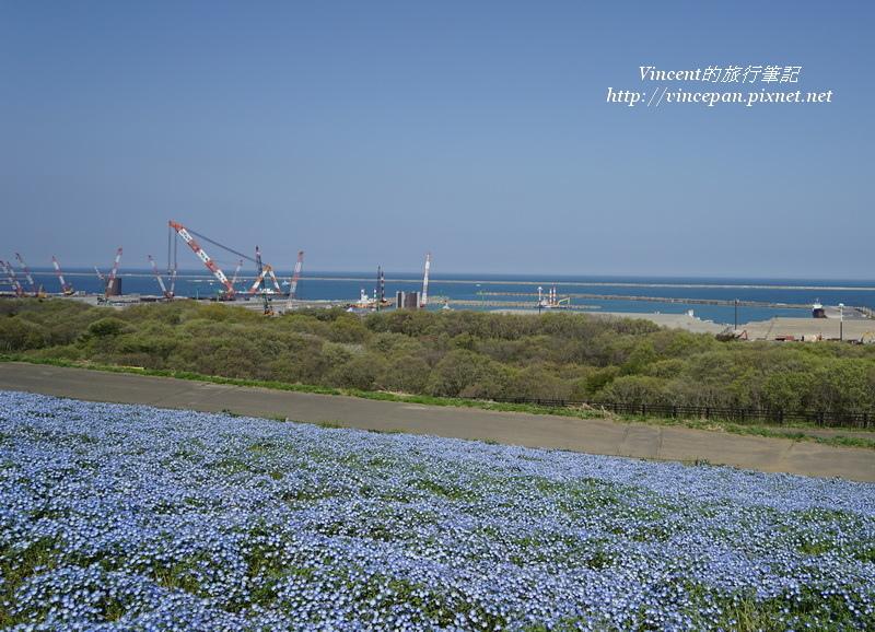 花海 港口