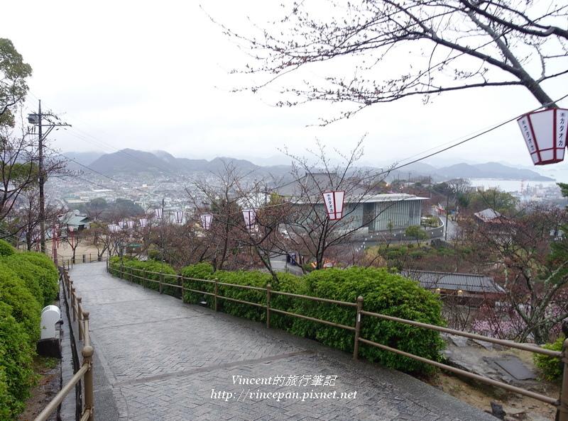 千光寺公園 櫻花樹