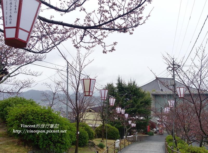 千光寺公園 櫻花樹 燈籠
