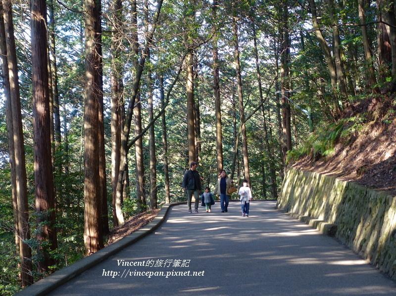 岩國城森林步道