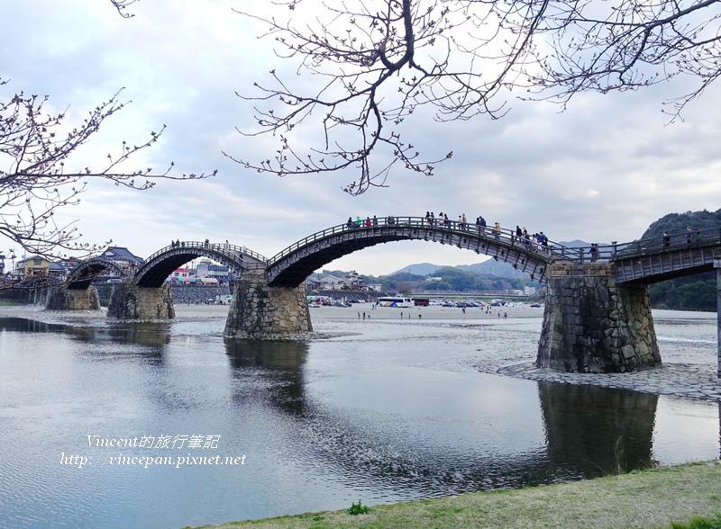 錦帶橋 櫻花樹