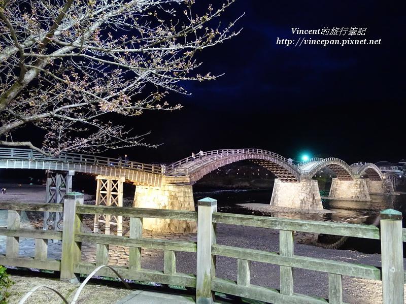 錦帶橋 櫻花樹 夜景