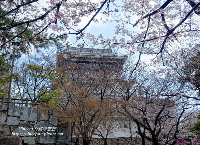 櫻花樹中天守