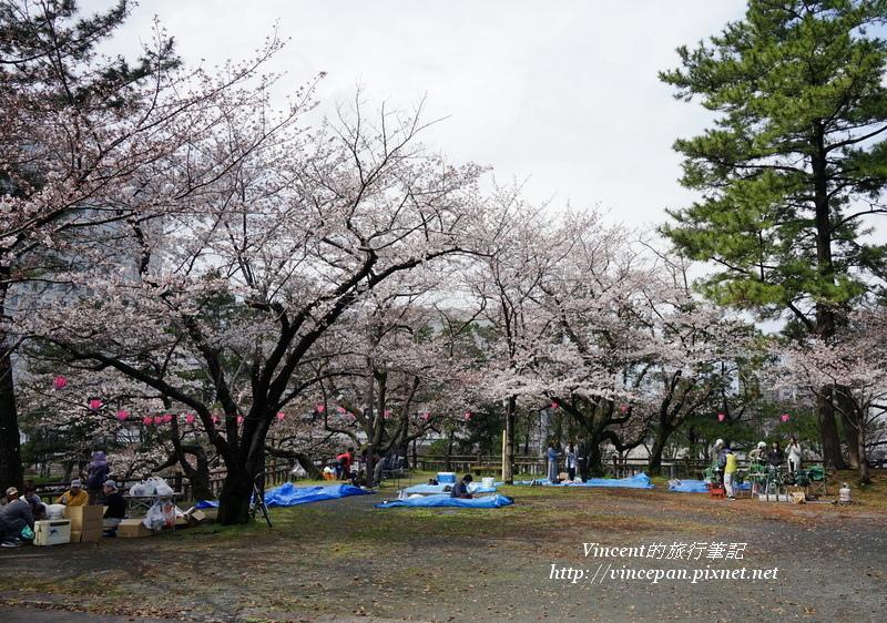 勝山公園賞櫻1