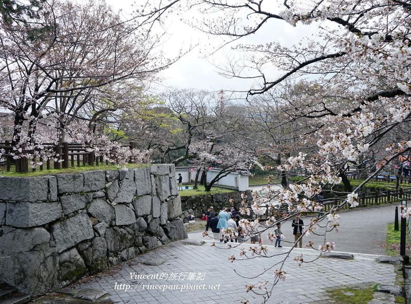槻門 櫻花
