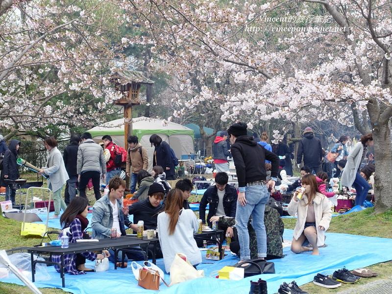 舞鶴公園野餐 1