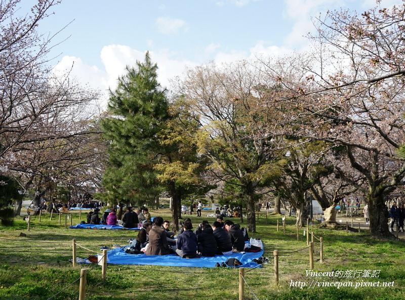 賞櫻野餐的民眾