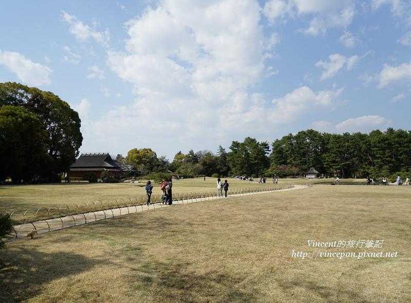 後樂園 草坪