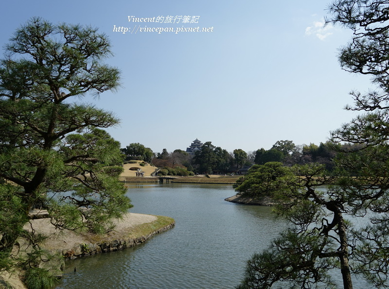 岡山城 松樹