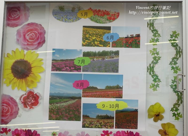 各月的花種