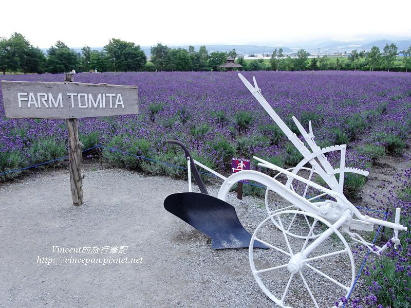 富田農場 薰衣草收割車