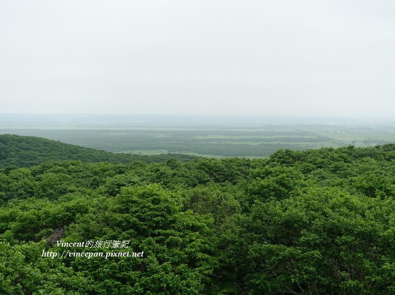釧路濕原展望台看濕原