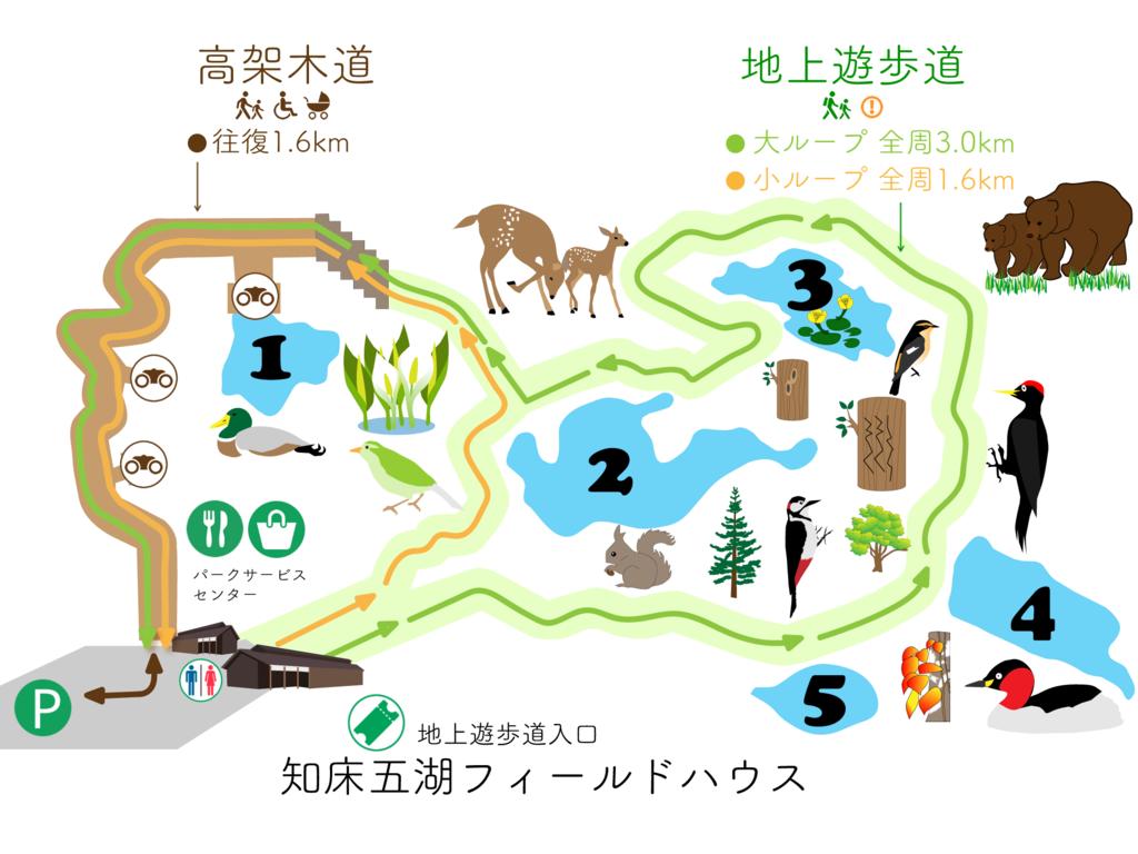 知床五湖步道路線圖