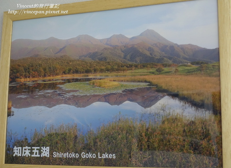 知床五湖的照片