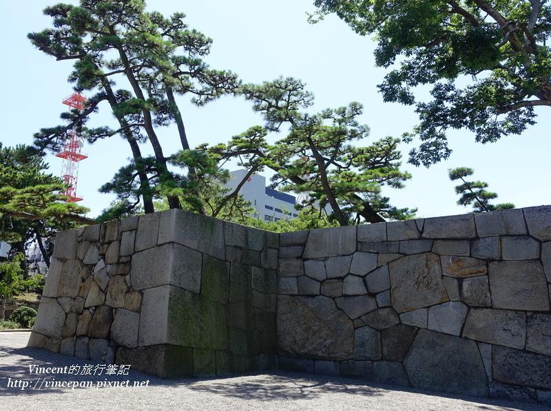 城牆 松樹
