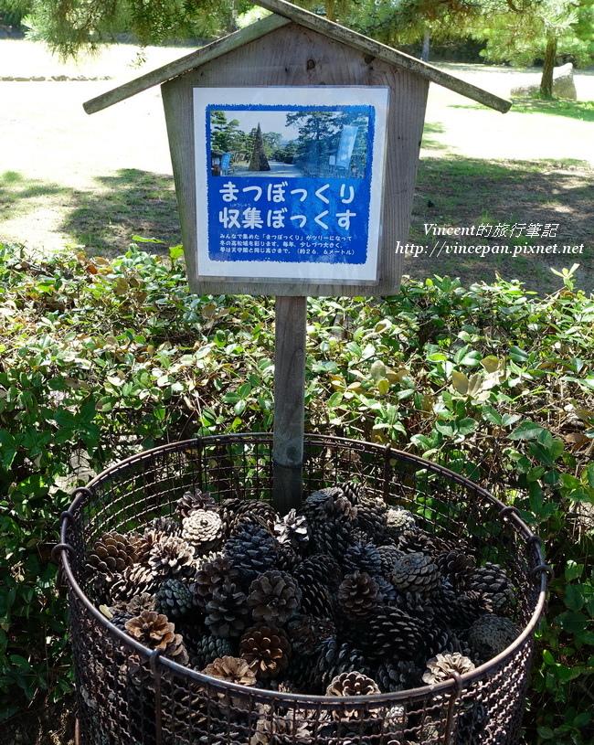 松果收集桶子