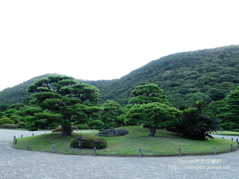 圓環 松樹