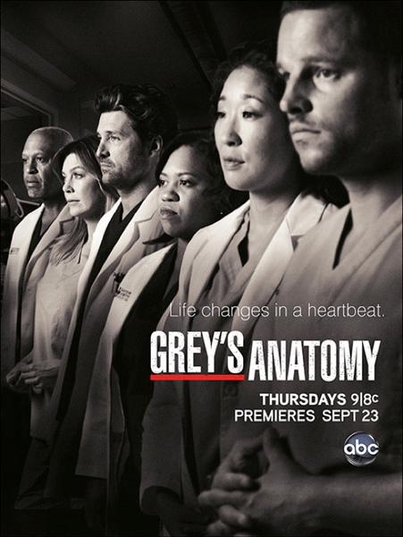Grey's Anatomy S7 Posters 04.jpg