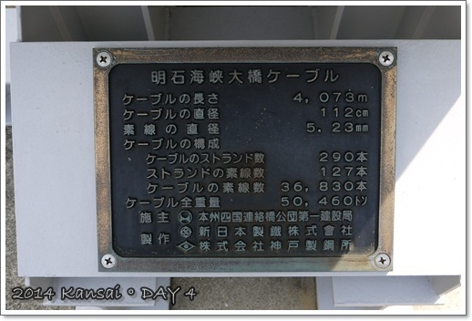 P1150539.JPG