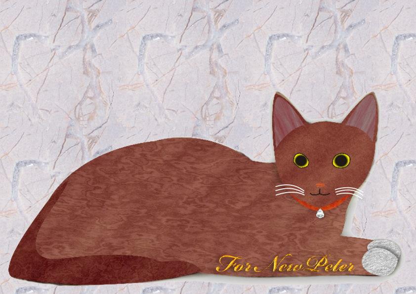送人的貓.jpg
